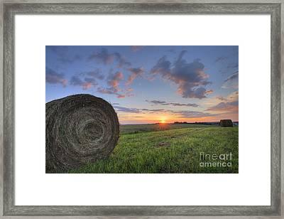 Hay Bales At Sunrise Framed Print by Dan Jurak