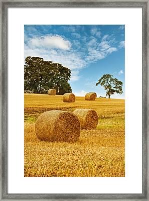 Hay Bales Framed Print by Amanda Elwell