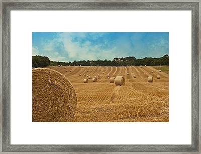 Hay Bales Framed Print by Georgia Fowler