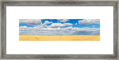 Hay Bales In A Field, Alberta, Canada Framed Print by Panoramic Images