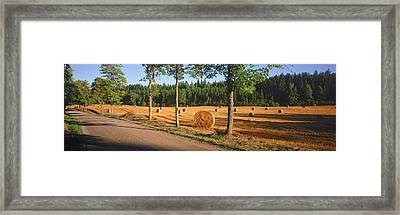 Hay Bales In A Field, Flens, Sweden Framed Print by Panoramic Images