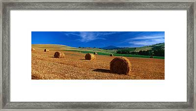 Hay Bales In A Field, Val Dorcia, Siena Framed Print by Panoramic Images