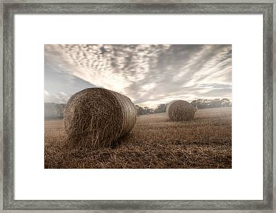 Hay Bales In The Mist Framed Print