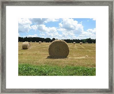 Hay Bales In The Pasture Framed Print by Ellen Jones