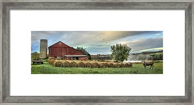 Hay Bales Framed Print by Lori Deiter