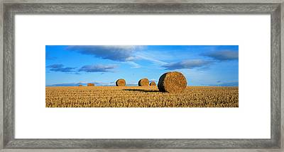 Hay Bales, Scotland, United Kingdom Framed Print