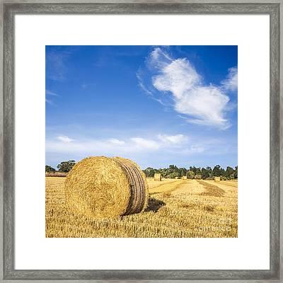 Hay Bales Under Deep Blue Summer Sky Framed Print