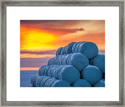 Hay Bales Wrapped In Plastic For Winter Framed Print