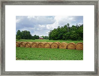 Hay Day Framed Print by Steven Michael