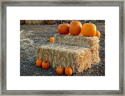 Framed Print featuring the photograph Hay Steps by Michael Gordon
