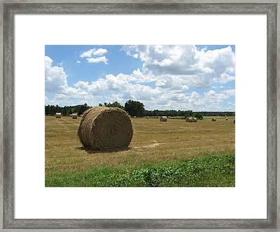 Haybale Framed Print by Ellen Jones