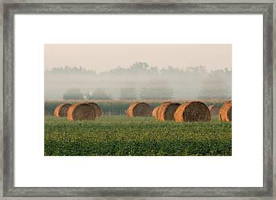 Haybales Framed Print by Sarah Boyd