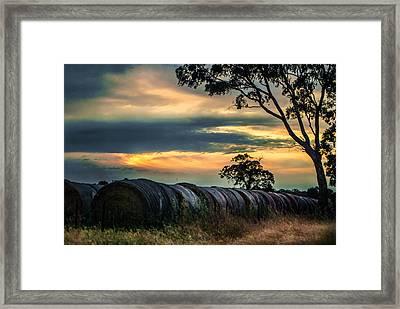 Haybales Under The Setting Sun Framed Print by Katrina Dimond