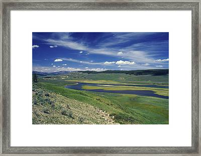 Hayden Valley Framed Print