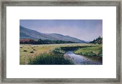 Hayfield And River Framed Print