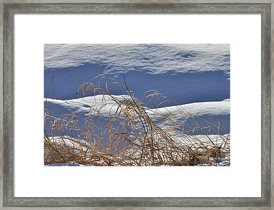 Hayfield In Winter Framed Print by Gerald Hiam