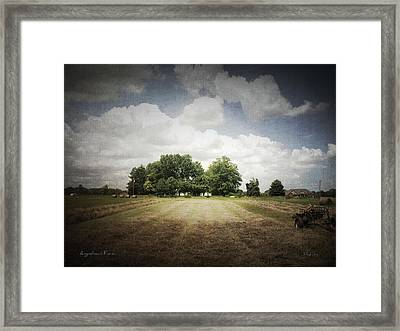 Haying At Angustown Framed Print by Cynthia Lassiter