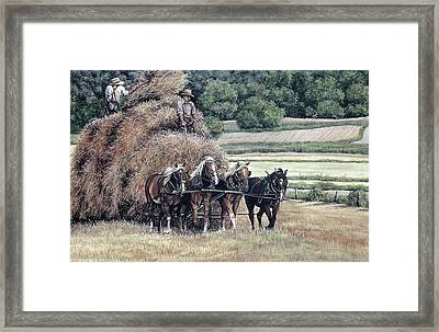 Haying Framed Print by Patricia Brandt