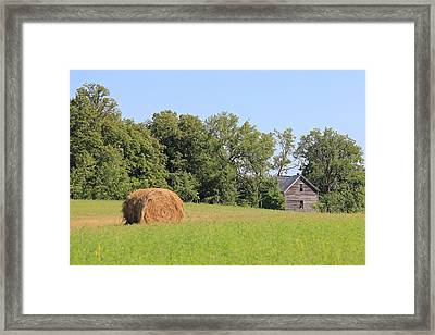 Haying Season At Captain Ed's Homestead Framed Print by Penny Meyers