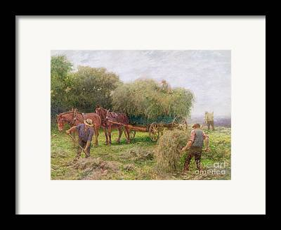 Horse And Cart Framed Prints