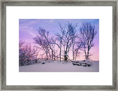Hayrake And Trees - Winter Sunset Framed Print