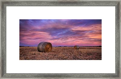 Hayseed Framed Print by Thomas Zimmerman