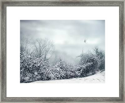 Hazy Shade Of Winter Framed Print