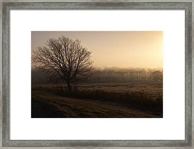Hazy Sunrise Framed Print by Mark Alder