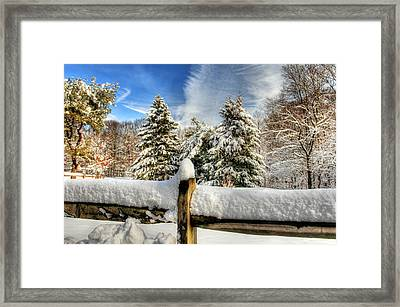 Hdr Of Three Trees Framed Print by Geraldine Scull