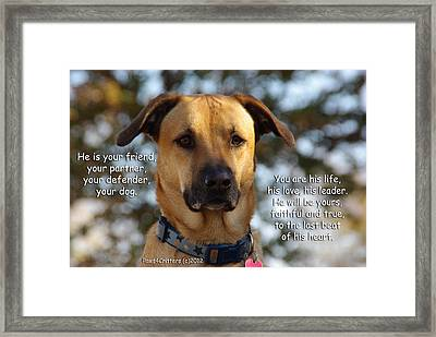 He Is Your Friend You Are His Life Framed Print by Robyn Stacey