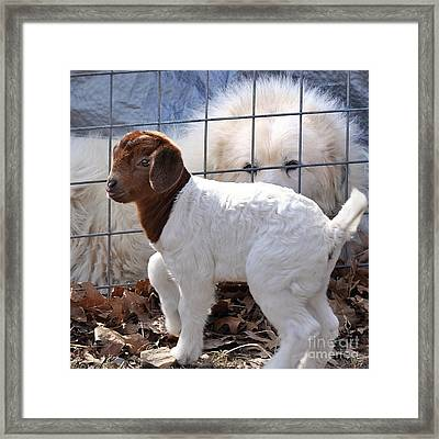 He Watches Over Me Framed Print