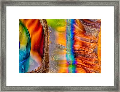 Head Honchos Framed Print
