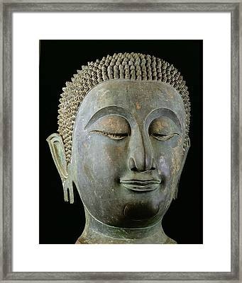 Head Of A Giant Buddha  Framed Print