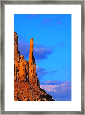 Head Of Condor Framed Print by Viktor Savchenko