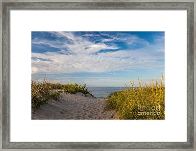 Head Of The Meadow Framed Print