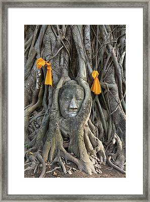 Head Of The Sand Stone Buddha Image Framed Print