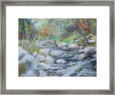 Head Waters On The James River Framed Print