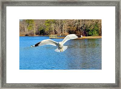 Headed Your Way Framed Print by Thomas  MacPherson Jr