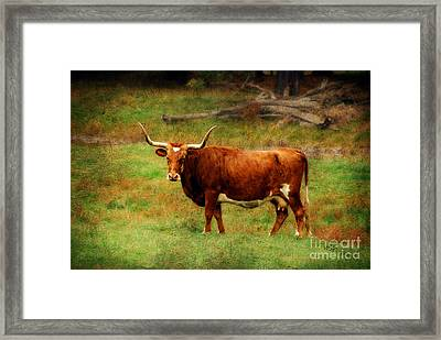 Heading For The Barn Framed Print by Lois Bryan