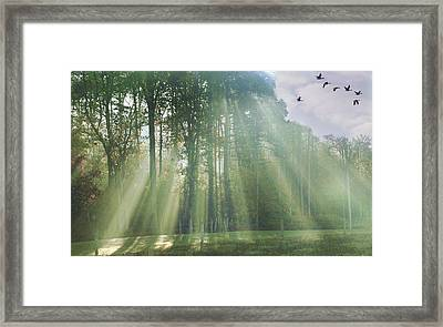 Heading South Framed Print by David Simons