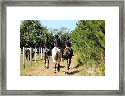 Heading To The Cross Country Course Framed Print
