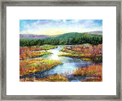 Headwaters Of Blackwater Framed Print by Bruce Schrader