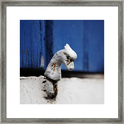 Heady Shutter Catch Framed Print