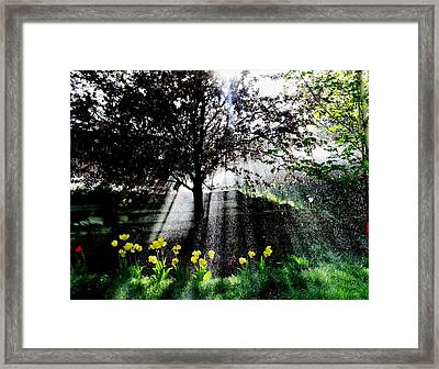Healing.. Framed Print
