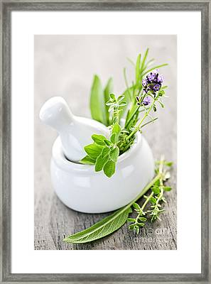 Healing Herbs In Mortar And Pestle Framed Print by Elena Elisseeva