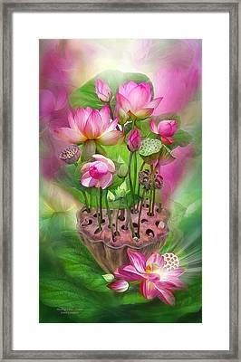 Healing Lotus - Crown Framed Print by Carol Cavalaris
