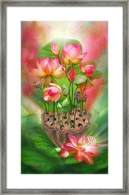 Healing Lotus - Root Framed Print by Carol Cavalaris