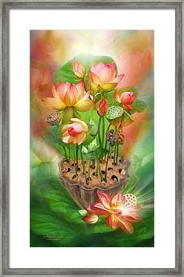 Healing Lotus - Sacral Framed Print