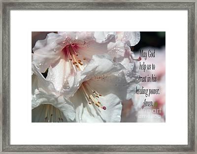 Healing Power Framed Print by Jean OKeeffe Macro Abundance Art