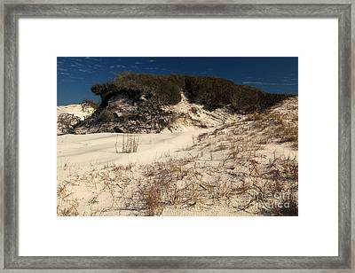 Healthy Dunes Framed Print by Adam Jewell